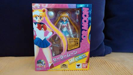Sailor Moon S.H Figuarts Figure 2013