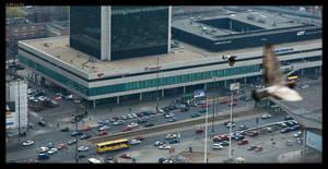 Warsaw pigeons by sirlatrom