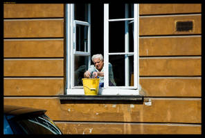 Spring window cleaning by sirlatrom