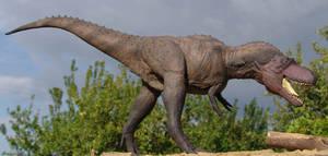 1/20 Albertosaurus