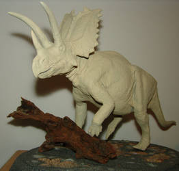 Pentaceratops rising by Gorgosaurus