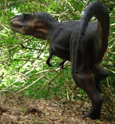 Past by... by Gorgosaurus