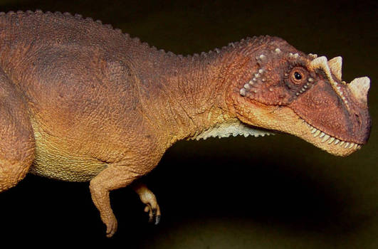 Ceratosaurus getting there