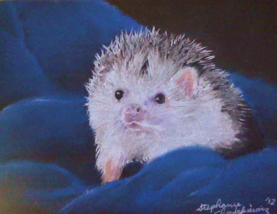 Hedgehog by SkiAr7sy