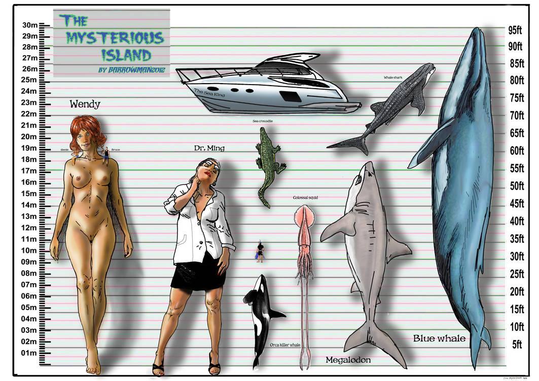 TMI - Size comparison chart