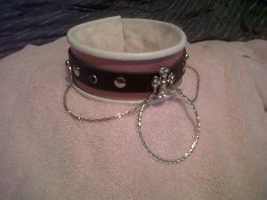 leather and silver collar front better quality