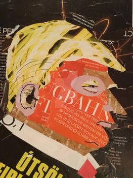 Trump,2017,collage