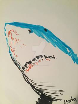 Shark sketch,2018