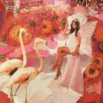 Pink angel,