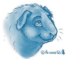 Guinea Pig Sketch