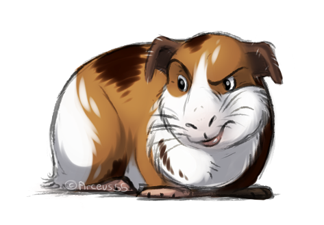 [Practice] Guinea Pig by Arceus55