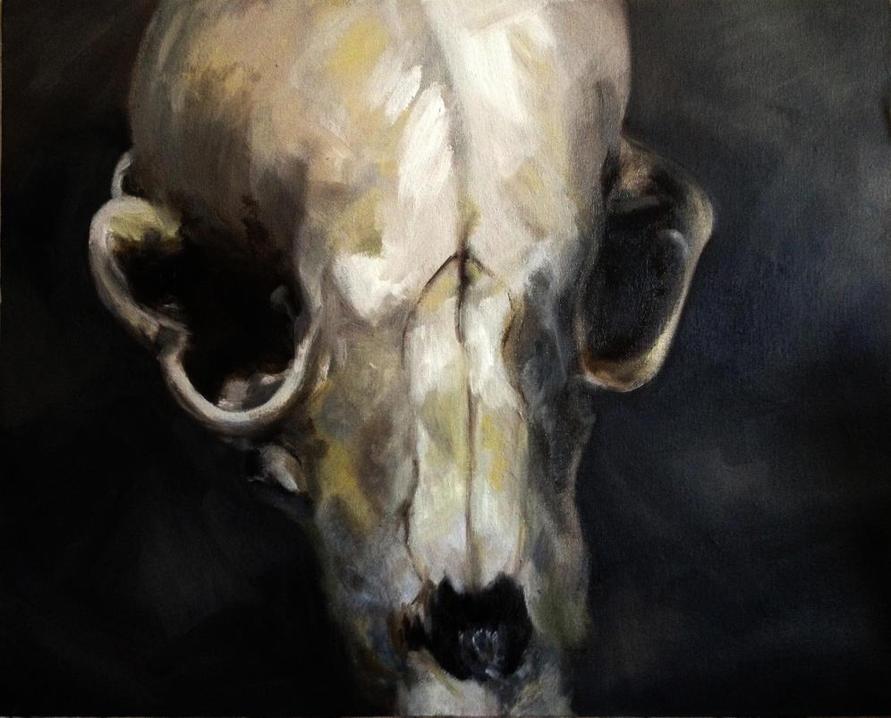 skull by monkette