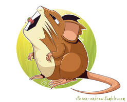 020 - Raticate by steven-andrew