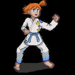 Misty Karate - Nintendolympics Collab