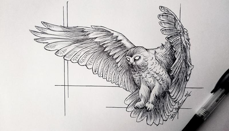 Ballpoint owl by Devions