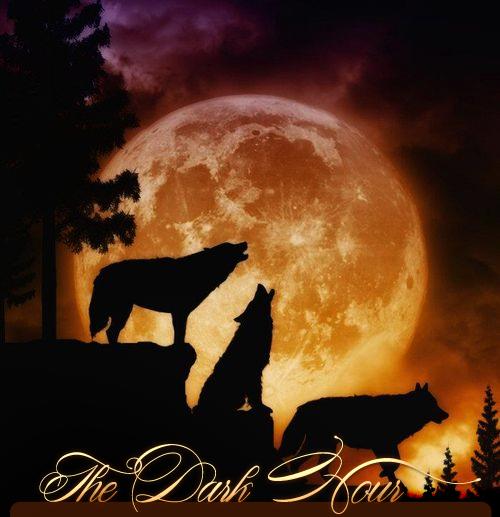 Wolft1 by TheDarkHour-RPG