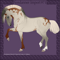 Nordanner Import 971 by BrindleTail