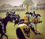 The battle : Grunwald 2010 II