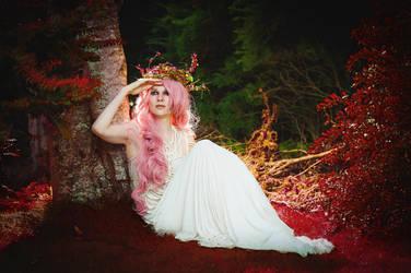 Buble gum fairy 4