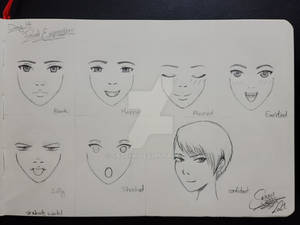 Day 14: Facial Expressions  Part 1