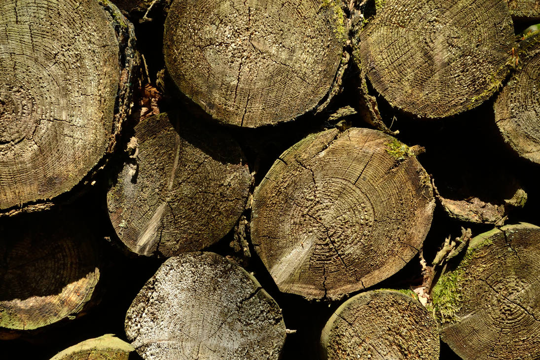 [STOCK] Pile of Logs by GlaedrTheDragon