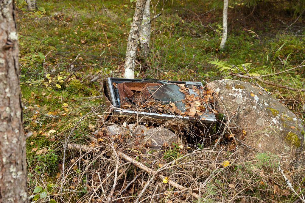 IMAGE: http://fc00.deviantart.net/fs70/f/2012/264/f/2/f27d44e48cf0bee06b151b0393e51bc1-d5ff2nn.jpg