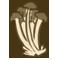 Enoki Mushrooms by exdog