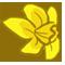 Daffodil by exdog
