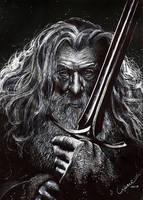 Gandalf the Grey by lienemima