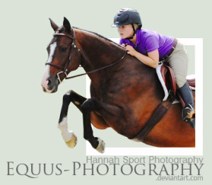 Equus-Photography's Profile Picture