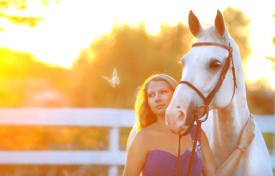 Mesmerized by Equus-Photography