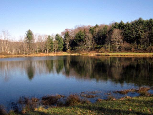 Lake by FishBoneMania