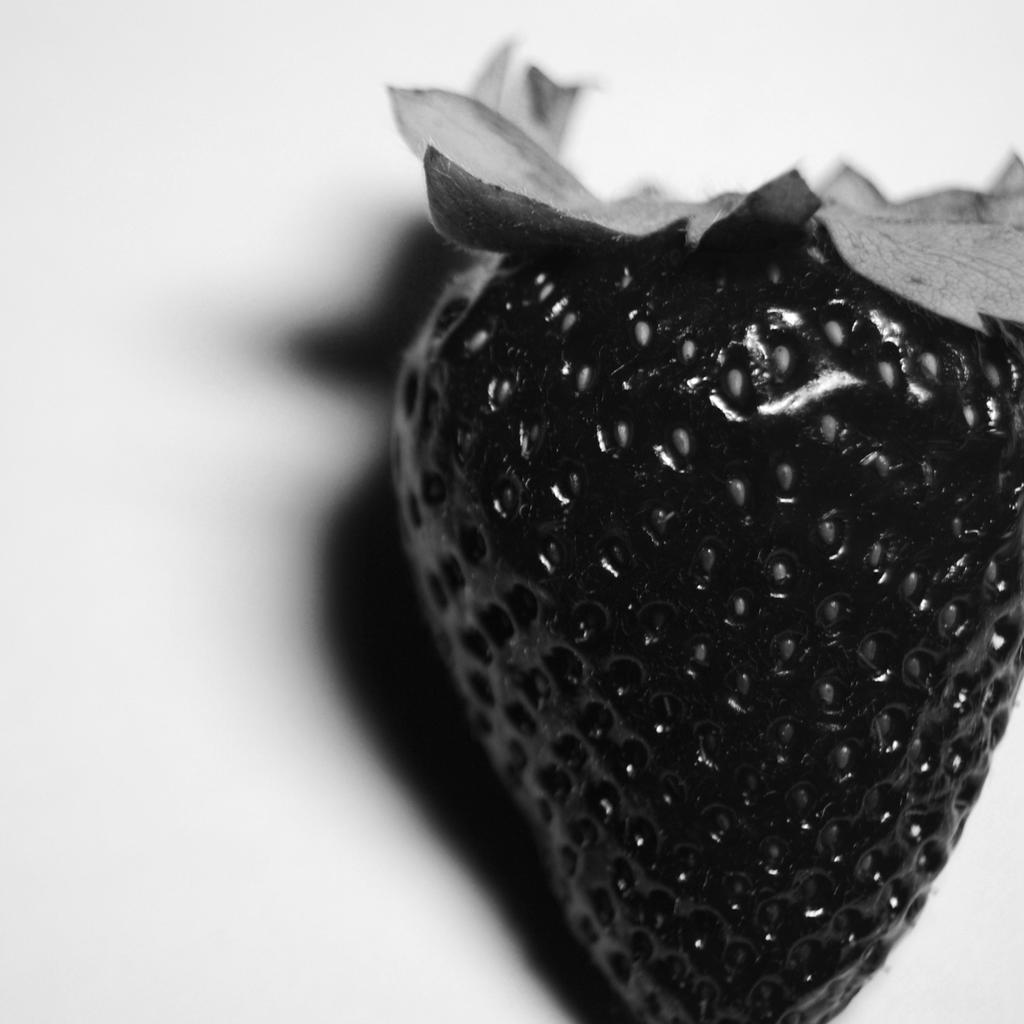 Darkberry by AnaRosaPhotography