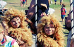 .: Lions and Tigers :.