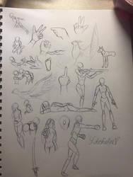 Draw Study by LotusFoxfire