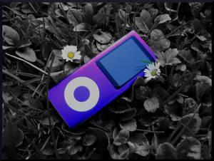 Purple Ipod