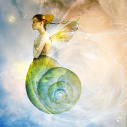 when snails fly
