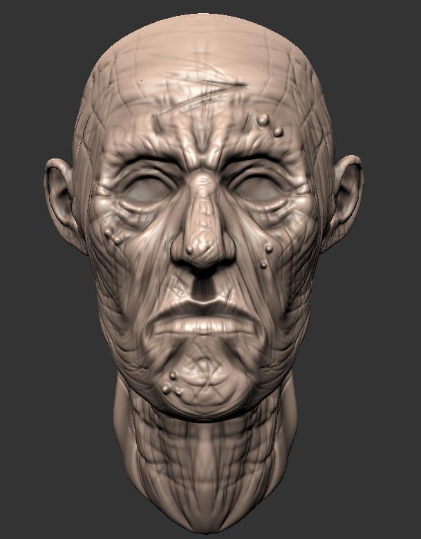 old_man_head_sculpt_by_gilesruscoe-d4ahq1w.jpg