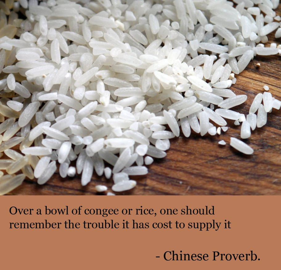Chinese Proverb - Over a bowl of congee or rice    by Leafeo