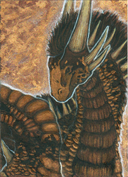 ACEO - Shareaza by SuzanneLaither