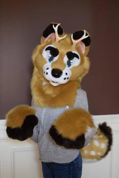 Deer Dog Partial For Sale *Back Up Again*