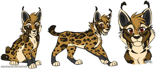 Iberian Lynx!