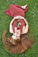 Crimson Rose IV by KahinaSpirit