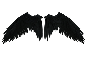 Black Wings D001 by Shadowhawk9973