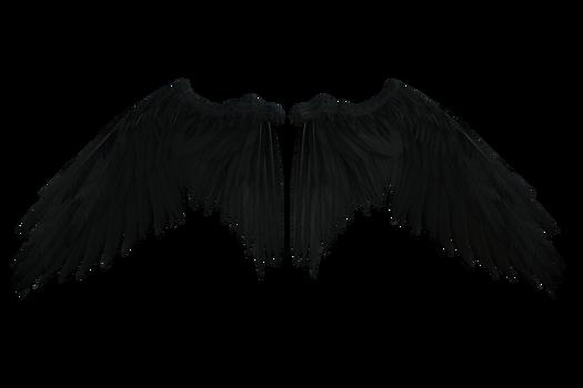 Black Wings D001
