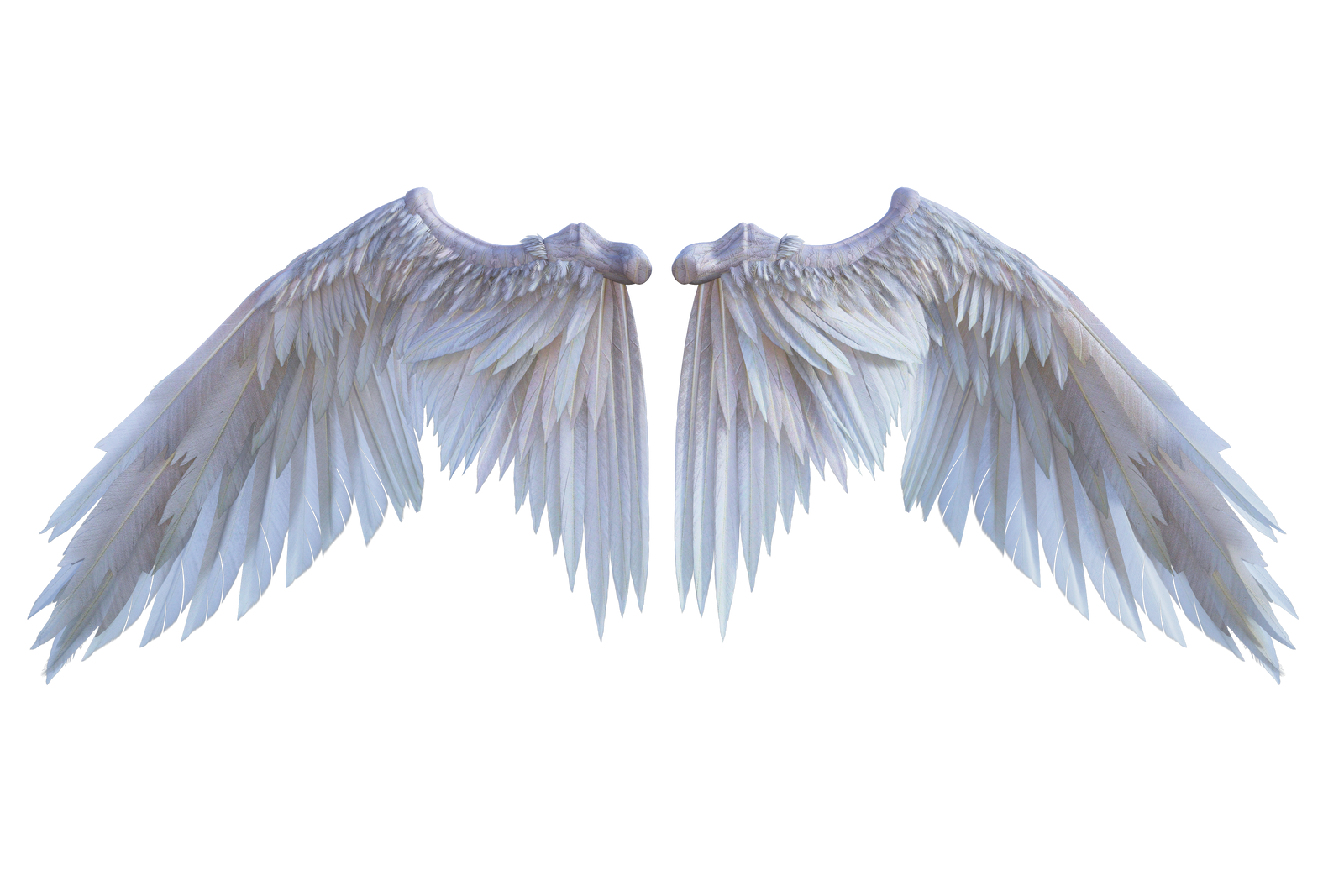 White Wings D001 by Shadowhawk9973