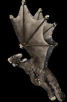 GrayDragon D001 Pose2 by Shadowhawk9973