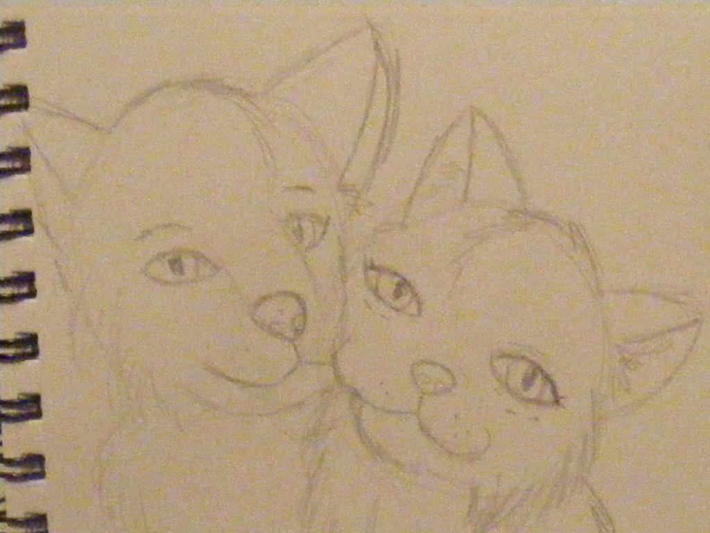 Wolf Jose and Vixen Malmuria by Una-oneechan19