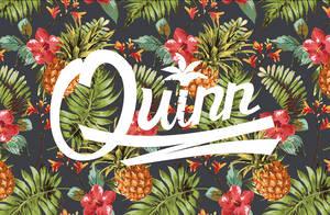 Logo/ Quinn by NNWW