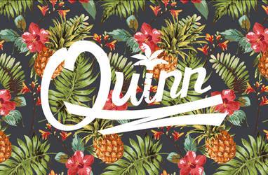 Logo/ Quinn